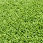 BEAULIEU INTERNATIONAL GRUP (BIG) Ковролин (в нарезку) Искусственная трава Soft Grass (erba) зеленый (2м)