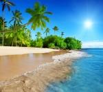 Фотообои Дикий пляж С1-002 Divino
