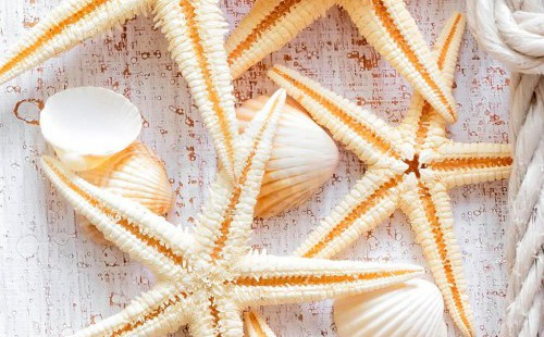 Панель ПВХ Морская звезда 0140 2,7*0,25 (уп=10шт=6,75м2)